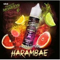 Harambae 50ML -Twelve Monkeys
