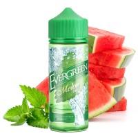 30 ml Evergreen - Melon Mint by Sique Liquid (Shake&Vape)