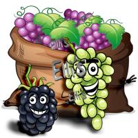 Grape Dream - Ellis Lebensmittel Aroma (DIY) Traube