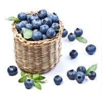 Blaubeere / Heidelbeere Ellis Lebensmittel Aroma