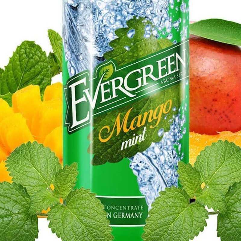 Mango Mint - 30/120ml Longfill von Evergreen - Aroma