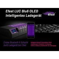 Efest LUC BLU6 OLED Ladegerät