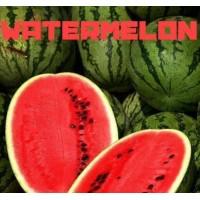 Aroma -Watermelon - 30 ml von Vampire Vape