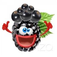 10 ml - Crazy Berries