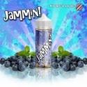 120 ml Jammin! by BIG F-IN DEAL - Blaubeer Jam(mi)