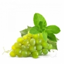 10 ml - Grape Mint - Vers. Nikotinstärken - gratis -