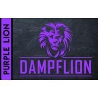 Dampflion Aroma 20ml Purple